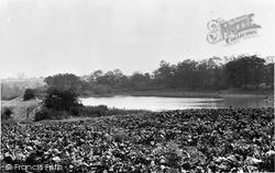 Killamarsh, The Ponds c.1955