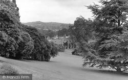 Killerton, House, A Peep Through The Trees c.1949