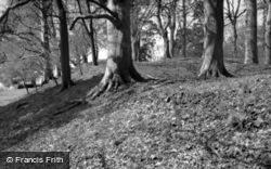 Killerton, Iron Age Camp 1960