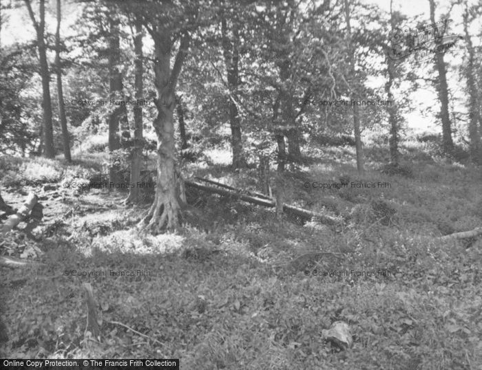 Photo of Kincardine Castle, The Remains 1954