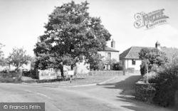 Kingston St Mary, The Jubilee Oak c.1955