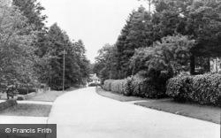 Beech Drive c.1955, Kingswood