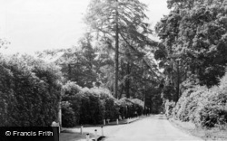 The Warren c.1960, Kingswood