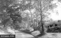Kinver, Kingsford Lane c.1965