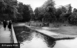 Kirby Misperton, Penguin Pool, Flamingo Park Zoo c.1960