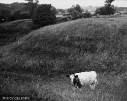 Old Castle Dykes 1951, Kirkcudbright