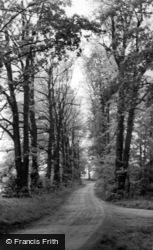 The Avenue c.1960, Kirklington
