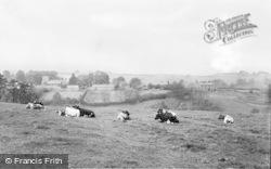 Kirkwhelpington, General View c.1955