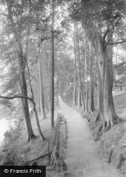 Knaresborough, Beech Avenue, Dropping Well 1914