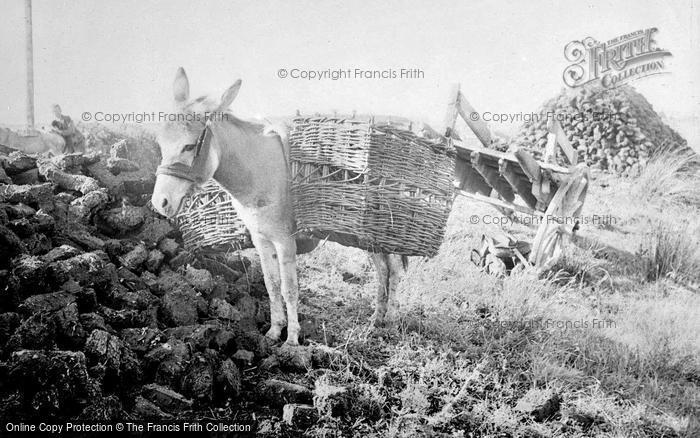Photo of Lahinch, Donkey, Collecting Peat c.1937