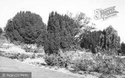 Lamberhurst, Court Lodge, Rose Garden c.1965