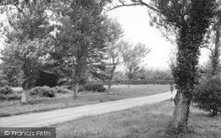 Lamberhurst, The Down c.1955