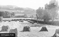 Lanchester, The Harvest c.1955