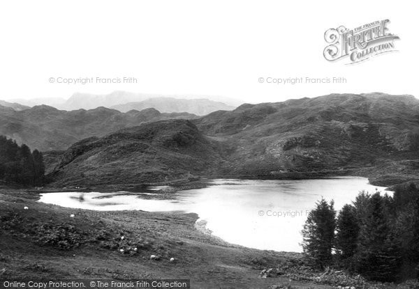 Langdale Pikes, Foot of Tarn Haws 1896.  (Neg. 38837)  © Copyright The Francis Frith Collection 2008. http://www.francisfrith.com