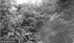 River At Gaskell's Walk c.1960, Langholm