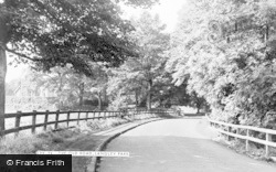 The Old Road c.1960, Langley Park