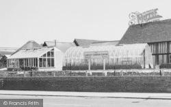 The Langley Garden Centre c.1965, Langley