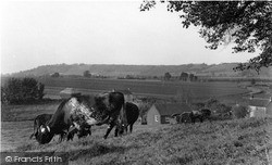 View From Taunton Road c.1955, Langport