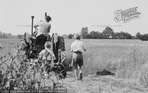 Photo of Latchingdon, Boys Following Tractor c.1960