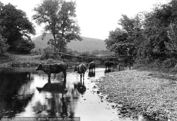 Photo of Launceston, Chain Bridge, River Tamar 1911