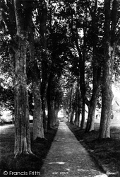 Launceston, St Thomas's Avenue 1893