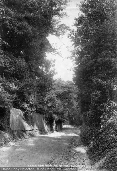 Photo of Leatherhead, Downs Lane 1902
