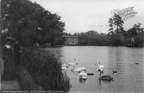 Photo of Leatherhead, Mill Pond 1895