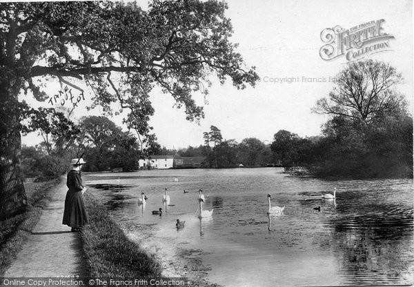 Photo of Leatherhead, Mill Pond 1909