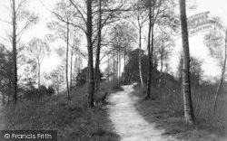 In Doghill Wood c.1938, Ledbury