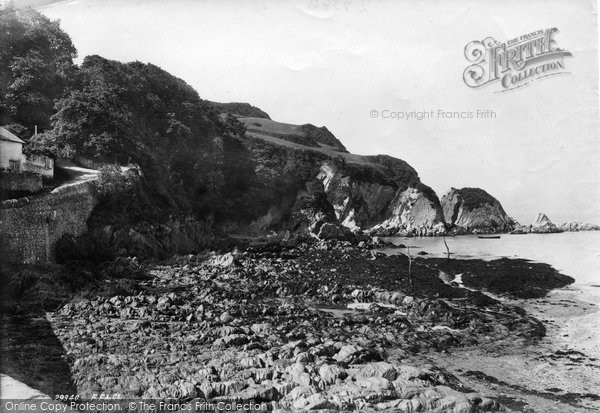 Photo of Lee, Beach 1891