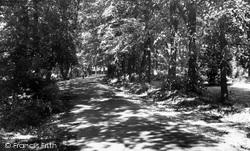 Leigh-on-Sea, Belfairs Park c.1955