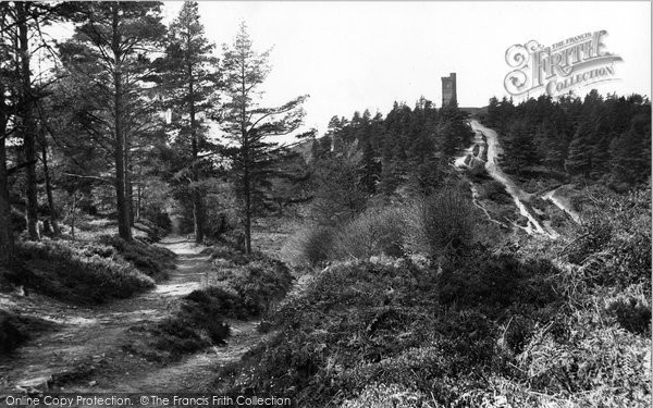 Photo of Leith Hill, 1919