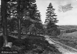 Leith Hill, Lonesome Valley 1919