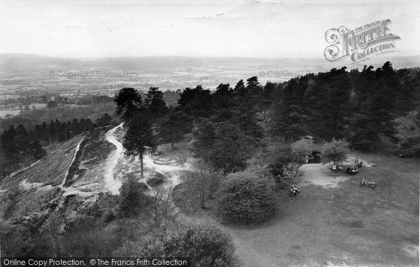 Photo of Leith Hill, View From The Tower c.1955