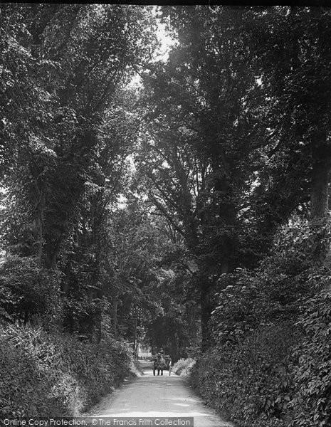 Photo of Letchworth, Letchworth Lane 1913