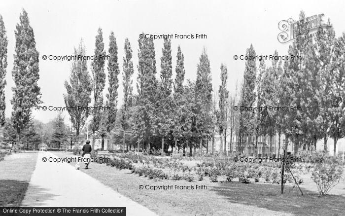 Photo of Letchworth, Rose Gardens c.1955