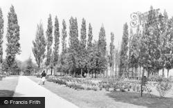 Letchworth, Rose Gardens c.1955