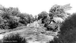Watercress Beds And Arabella's Cottage c.1960, Letcombe Bassett
