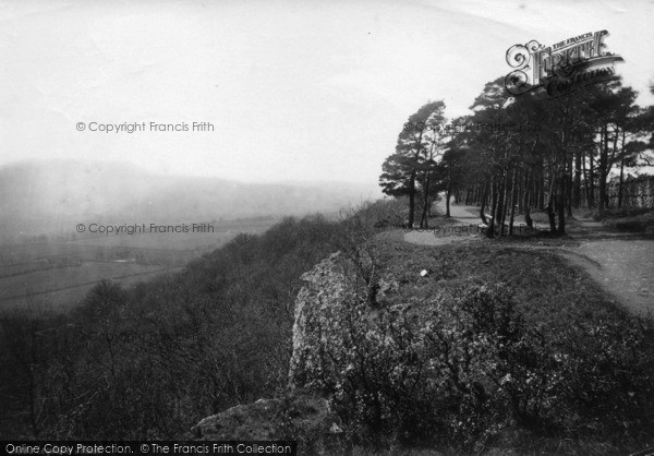 Photo of Leyburn, Shawl 1889