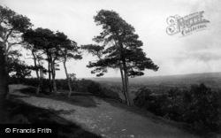 Leyburn, The Shawl 1896
