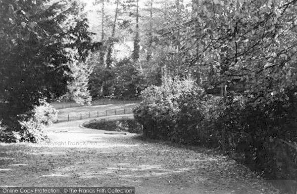 Photo of Lickey, The Park c.1955