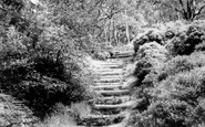 Lickey, the Steps, Lickey Hills c1960