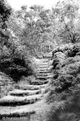The Steps, Lickey Hills c.1960, Lickey