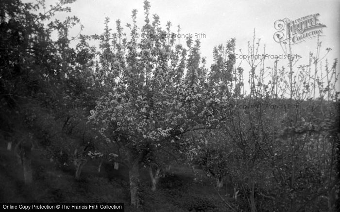 Photo of Limpsfield, Caxton Convalescent Home, The Orchard 1947