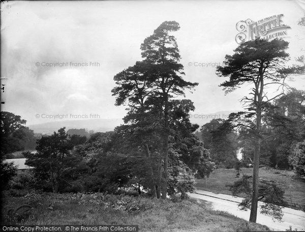 Photo of Limpsfield, Common 1924