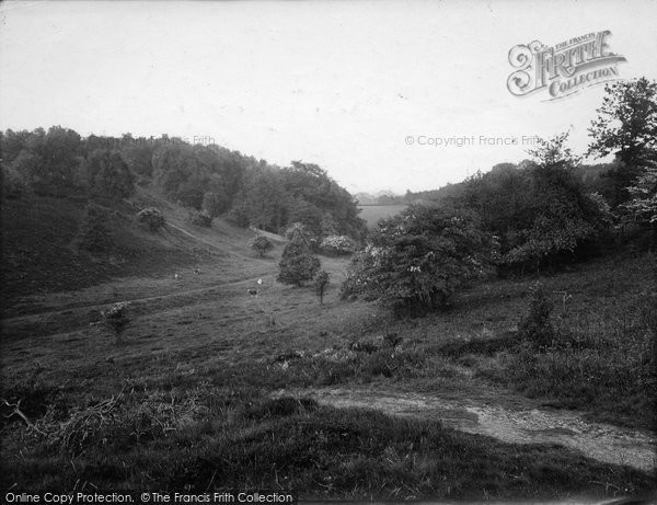 Photo of Limpsfield, Common, The Valley 1924