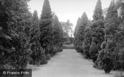 Lindfield, Old Place, The Wilderness c.1955