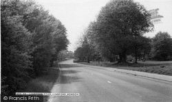 Lindford Road c.1960, Lindford