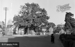 Lingfield, Village By The Pond 1950