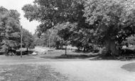 Linwood photo